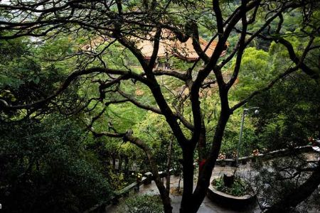 Beautiful sceneries of Nanputuo Temple in Xiamen